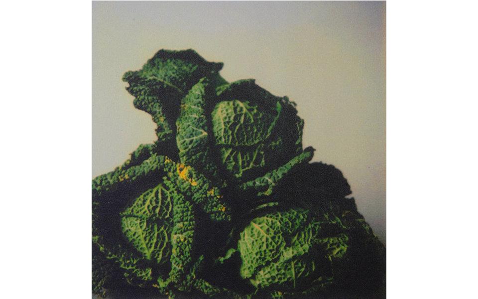 bt_cabbages.jpg